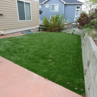 Small Back Yard Turf