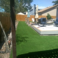 1809 Back Yard Turf