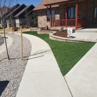 2031 Front Yard Turf with Sidewalk