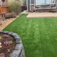 2014 Turf Backyard With Edging