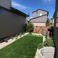 2020 Small Backyard After
