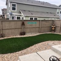 2027 Small Rounded Backyard Turf