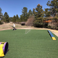 2029 Turf Backyard Dog Agility Course