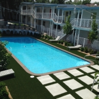 Pool and Turf