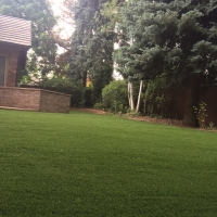 Residential Turf Lawn